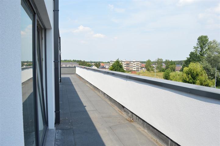 en-GB PictureReference:[87351]nl-BETe koop - nieuwbouw appartement - Leopoldsburg - Immo Groep 5 - Terras wordt keramisch betegeld. PictureReference:[87351]fr-BE PictureReference:[87351]