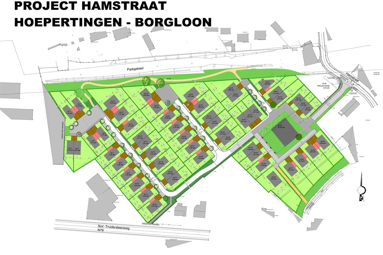 Hamveld in Borgloon